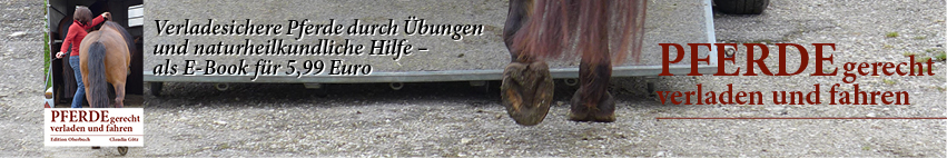 Welches Podest Woher Pferdekosmos